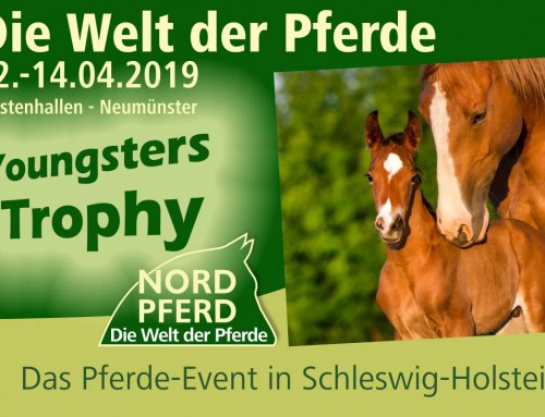 NORDPFERD Youngsters Trophy